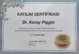 koray-s-1